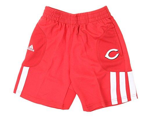 (MLB Cincinnati Reds Little Boys Kids Batters Choice Shorts, Red (Large (7)))