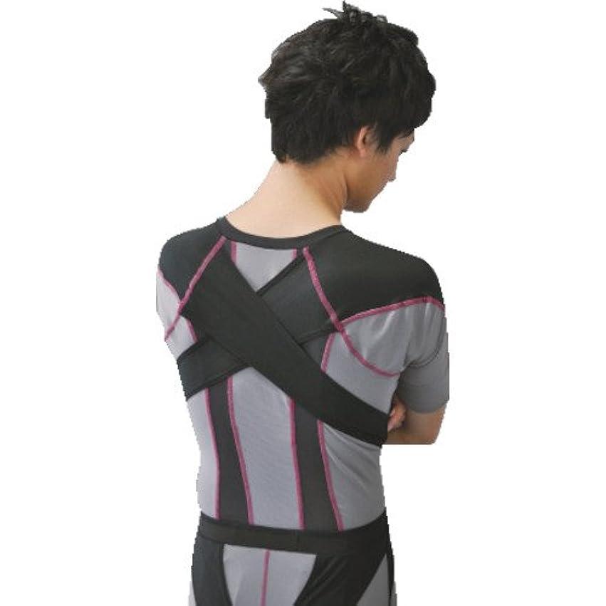 ブーム予防接種する限りStabilizing Lumbar Lower Back Brace and Support Belt with Dual Adjustable Straps and Breathable Mesh Panels