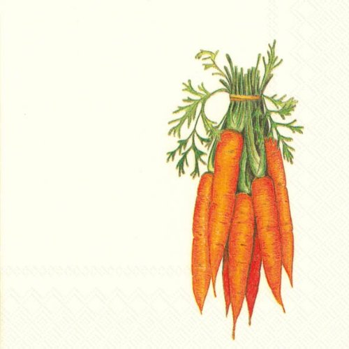 Ideal Home Range 20-Count 3-Ply Paper Cocktail Napkins, Carrots