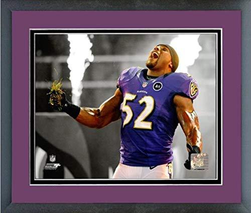 Ray Lewis Baltimore Ravens Spotlight Action Photo (Size: 13
