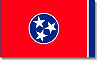product image for 5x8' Tennessee 2ply Polyester State Flag