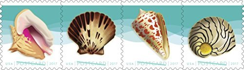 Seashells Postcard Stamp Usps Forever Stamps  Roll Of 100   Us Postage Card Stamps