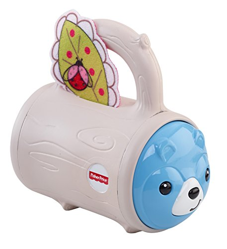 Fisher-Price Hide 'n Peek Rattle