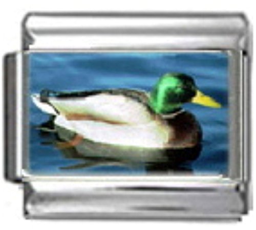 DUCK MALLARD BIRD Photo Italian Charm 9mm Link - 1 x BI026 Single Bracelet Link