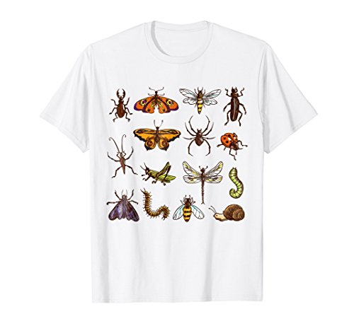 Entomology Shirt Collection Of Insects Shirt Funny Bug Tee
