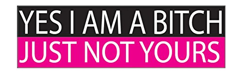 Funny Auto Decal Bumper Sticker For Women Girls Yes I Am A Bitch Just Not Yours For Car Truck RV Boat SUV