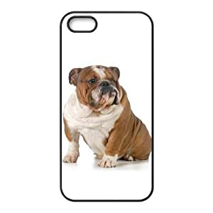 iPhone 5 5s Cell Phone Case Black Basset Hound Plastic Design Phone Case YXB