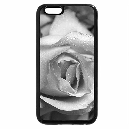 iPhone 6S Case, iPhone 6 Case (Black & White) - The beauty of the roses For Applejackqueen