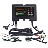 BatteryMINDer Charger-Desulfator - 12 Volt, AGM Batteries, Model# 2012-AGM