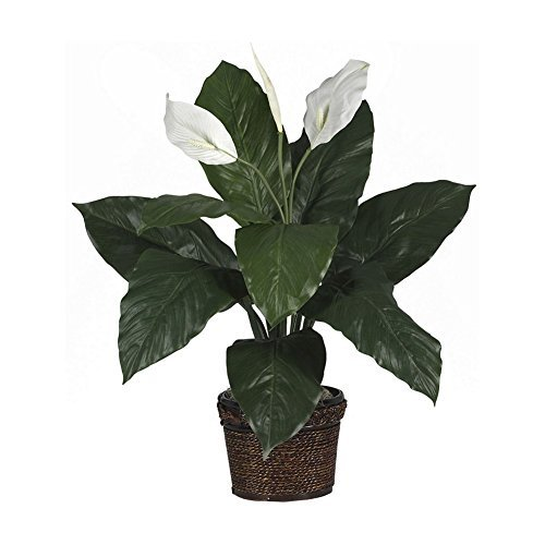 Peace Lily Spathyfillum With Laquered Wicker Planter Silk Plant by Unique's Shop