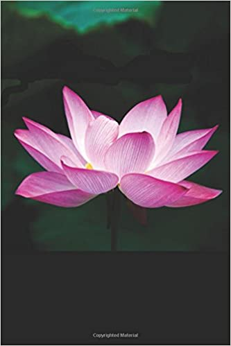 Amazonin Buy Lotus Flower Book Online At Low Prices In India