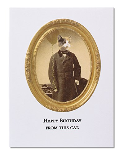 Birthday Greeting Cat Card (American Greetings Funny This Cat Birthday Card with Embossing - 5856686)