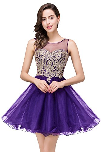 MisShow 2017 Women's Lace Applique A Line Backless Short Party Gowns Dark Purple US12