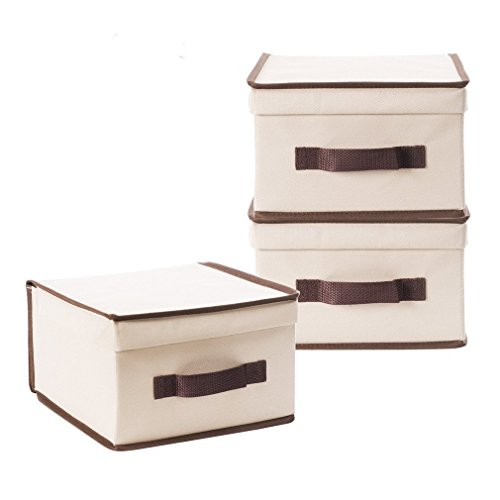 StorageManiac Foldable Natural polyester Canvas Storage Box, Convenient Storage Box with Lid (Medium) (Small Storage Baskets With Lids)