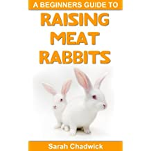 Beginners Guide to Raising Meat Rabbits