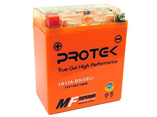 Protek YB12A-BS YB12A-A YB12A-B 12N12A-4A-1 12V 12Ah AGM Gel Type Battery for 1980-1983 Kawasaki KZ750 KZ650 KZ550 CSR, 1986-1997 Kawasaki ZL600, 1990-1996 Kawasaki Vulcan EN500 EN450 ()