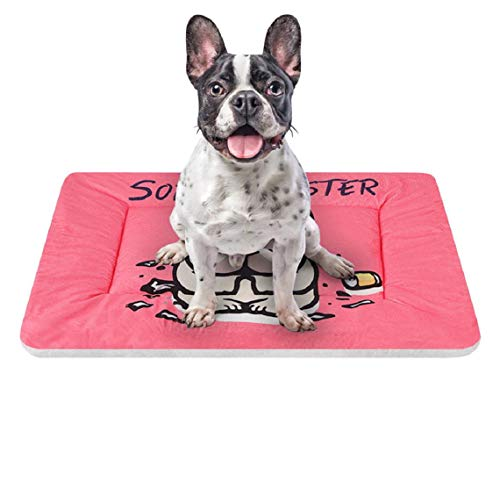 (Barlingrock Small Dog Cat Puppy Bed, Square Shape Self Warming Portable Indoor Soft Warm Comfortable and Washable Pet Dog Puppy Cat Kennel Pad Bed Cushion Coral Fleece Mat Soft Warm Blanket)