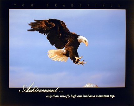 (Eagle Wall Decor Bald Diving Landing Achievement Wild Bird Animal Art Print Poster)