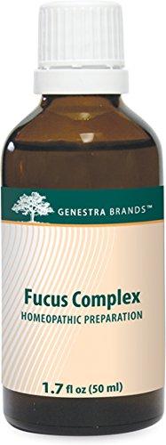 Genestra Brands - Fucus Complex - Homeopathic Preparation - 1.7 fl oz (50 ml) by Genestra Brands (Image #2)