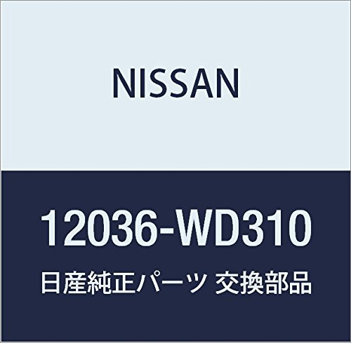 NISSAN (日産) 純正部品 リング セツト ピストン 品番12036-WD310 B01LXA77C6