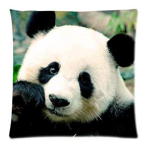 Jxrodekz Lindo Oso Panda Divertido Animal Funda de cojín ...