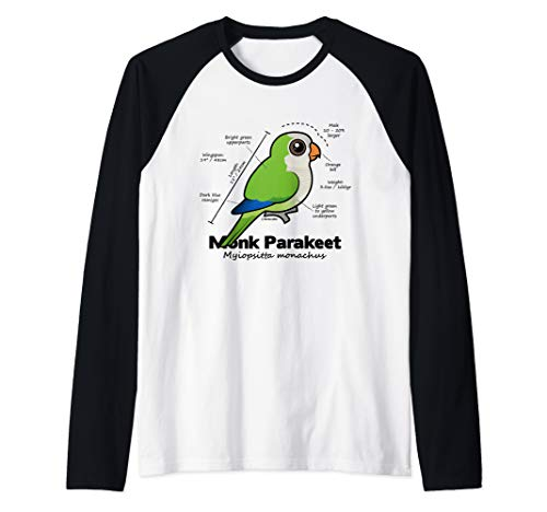 Cute Monk Parakeet Statistics   Quaker Parrot Birdorable Raglan Baseball Tee