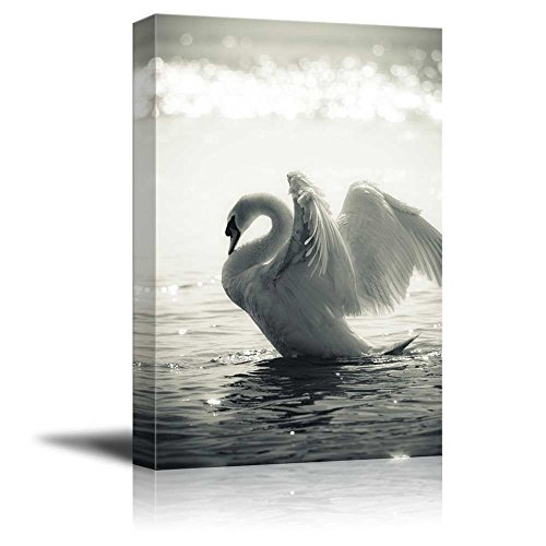 Graceful Swan - wall26 - Canvas Prints Wall Art - Graceful Swan on a Lake in Black and White | Modern Wall Decor/Home Decoration Stretched Gallery Canvas Wrap Giclee Print. Ready to Hang - 12