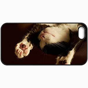 Customized Cellphone Case Back Cover For iPhone 5 5S, Protective Hardshell Case Personalized Cats Kitten Paws Sleeping Black And White Cats Black