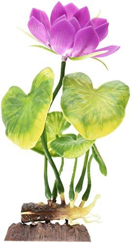 - Water Lily White Medium Plant Aqua-Plant Sinkers