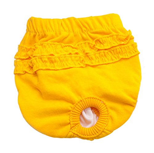 S-Forward Pet Supply - Hot Cute Pet Dog Panty Brief Underwear Short Pants Sanitary Pants for Dog Girl Female ()