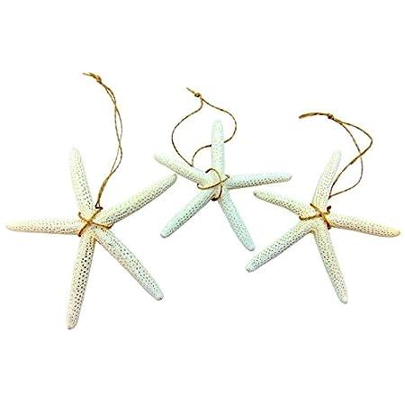 41kbCFh-LJL._SS450_ Starfish Christmas Ornaments