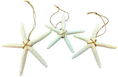 41kbCFh-LJL Amazing Starfish Christmas Ornaments