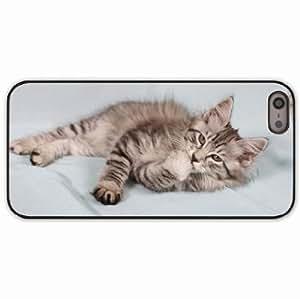 iPhone 5 5S Black Hardshell Case kitten fluffy striped Desin Images Protector Back Cover