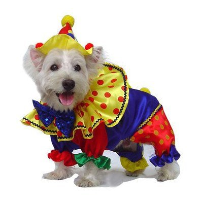 Shiny Clown Dog Costume Size: 5 - (14'' L)