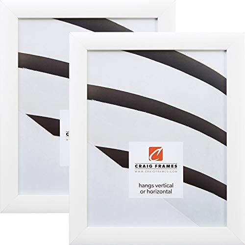 Craig Frames 23247812 13 x 19 Inch Picture Frame, White, Set of 2 ()