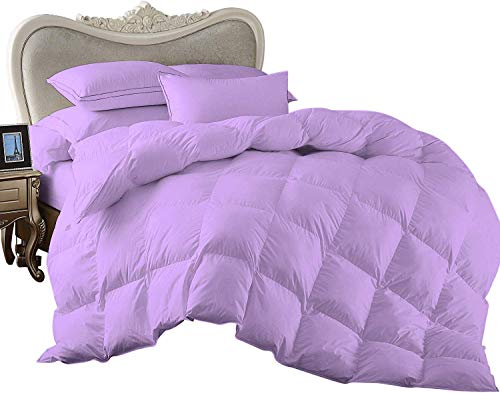 Blue Ridge Home Fashions 100% Egyptian Cotton 3 Piece All Season Oversized Super King Goose Down Comforter by PS Linen & Bedding 800 Thread Count Solid Lilac