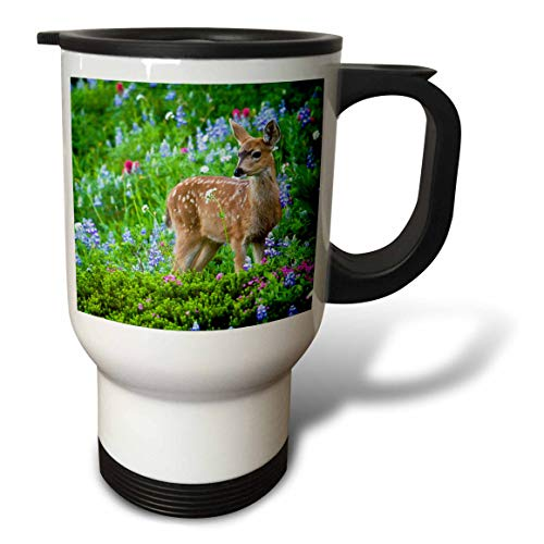 (3dRose Danita Delimont - Deer - Black-tail Deer Fawn, Cascade Wildflowers - 14oz Stainless Steel Travel Mug (tm_315167_1))