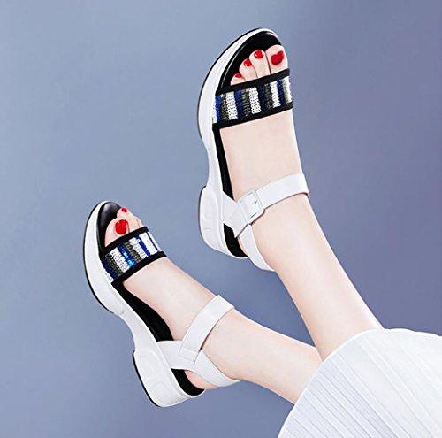 Femenino De color B A Romanas 35 Planas Planas Salvajes Coreanos Verano Simples Fafz Tamaño Gruesos sandalias Sandalias Zapatos Moda wg6qtxxZUX