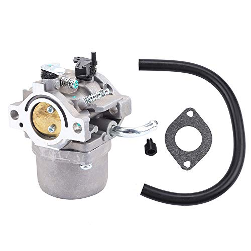 Leopop 590399 Carburetor for Briggs and Stratton 590399 796077 Lawn Mower Carb 394358S Fuel Filter + Gasket