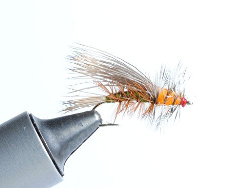Stimulator Dry Fly - 6 Pack (Olive, #8)