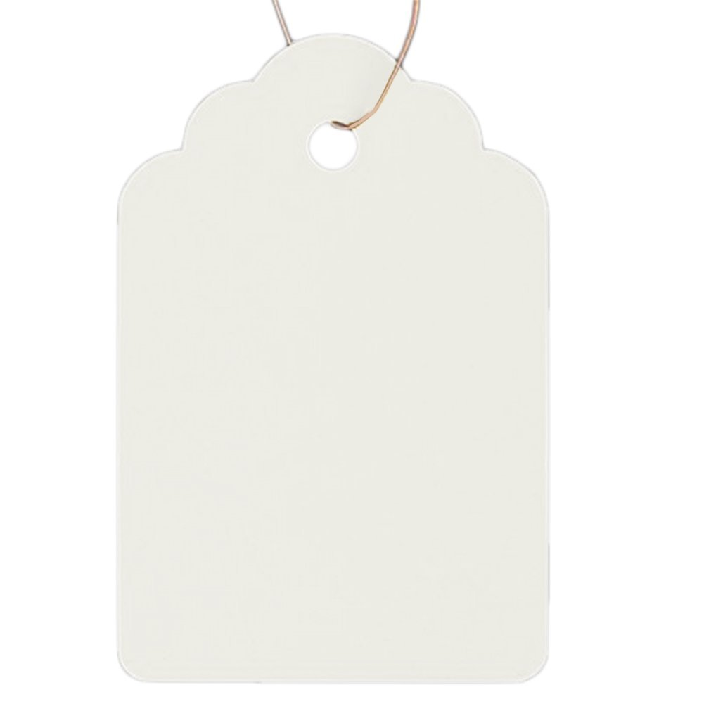 Outflower 100 PCS Garden Label White Waterproof HangTag for Flower