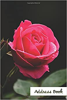 Address Book.: (Flower Edition Vol. E47) Pink Rose Design Glossy And Soft Cover, Large Print, Font, 6