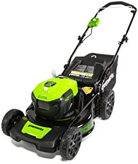 GreenWorks G-MAX 40V 20 Brushless Dual Port Lawn Mower, Battery and Charger Not Included MO40L00