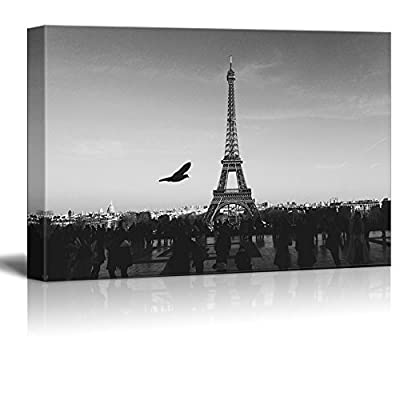 Eiffel Tower in Paris in Black and White...
