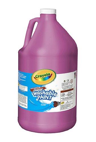 UPC 071662082697, Washable Paint (BIN542128069)