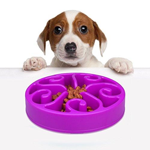 Dog Bowl Feeder Fun Slow Feeder, Helping Prevent Obesity Bloat Regurgitation and Overeating Anti-Skid Design (purple)