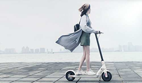 xiaomi mijia folding electric scooter 30km range 280wh. Black Bedroom Furniture Sets. Home Design Ideas