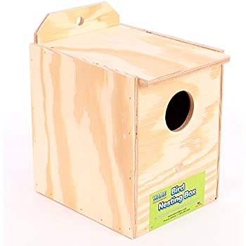 Ware Manufacturing Wood Parakeet Regular Nest Box, Keet