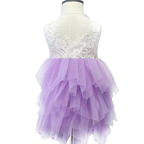 Lace Back Flower Girl Dress,Kids Cute Backless Dress Embroidered Mesh Lace Applique Dress (Purple, 2-3 (Purple Tulle Flower Girl Dresses)