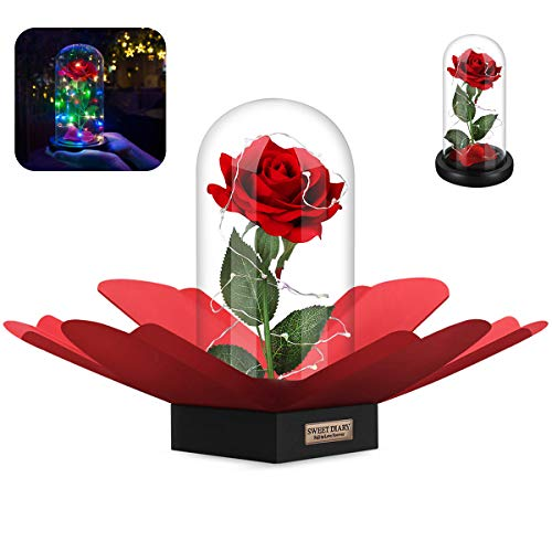 SWEET DIARY Beauty and The Beast,  Mothers Day Gifts, Artificial Flowers Red Silk Rose DIY with Fallen Petals and RGB, Red Silk Fallen Petals and RGB+White Led Light Dome (Glass Rose Kit)]()